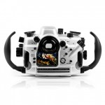 Carcasa-Seacam-para-Canon-7D-Mark-II-trasera