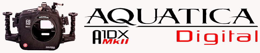 aquatica_banner_a1dxmarkii