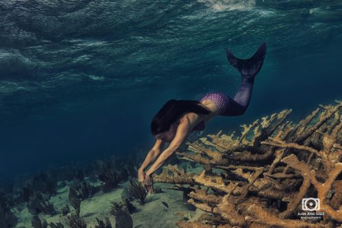 Mermaid_Juan_Jose_Saez