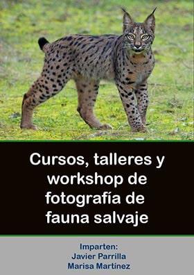 cursos-fotografia-naturaleza