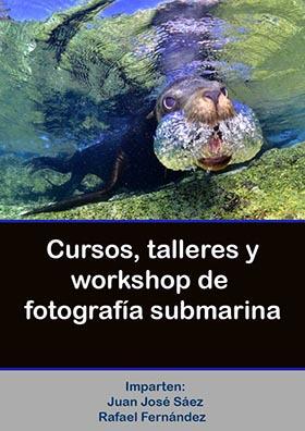 cursos-fotografia-submarina
