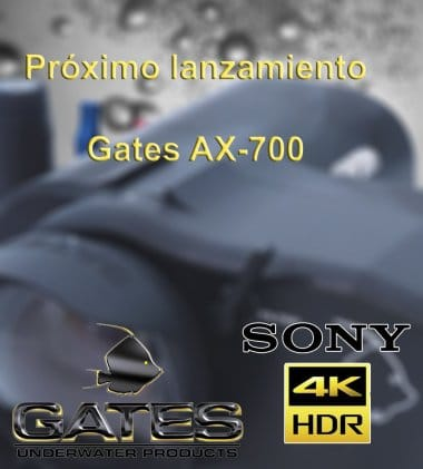 gates-ax-700