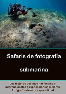 viajes-fotografia-submarina