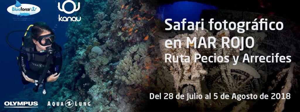 Safari-foto-submarina-Mar-Rojo-