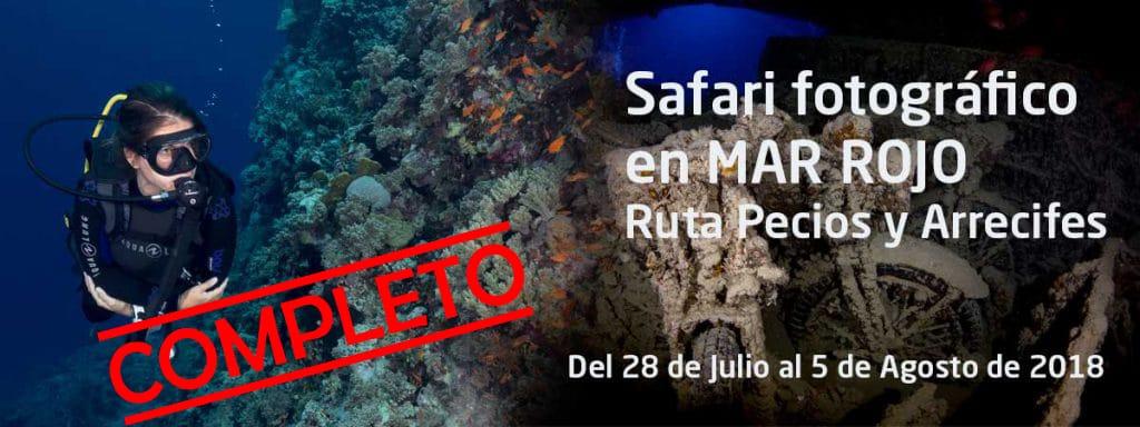 Safari-fotografia-submarina-Mar-Rojo-completo