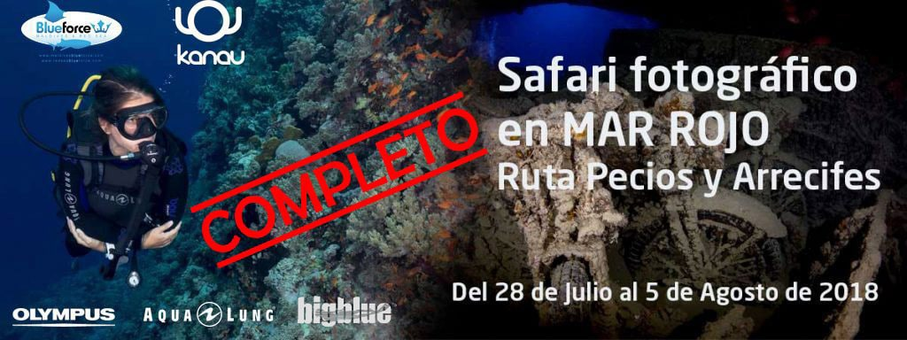 Safari-fotografia-submarina-Mar-Rojo-1-completo-logos