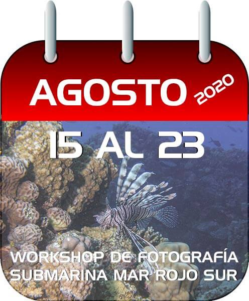 WORKSHOP FOTO SUBMARINAMAR-ROJO-SUR-2020-
