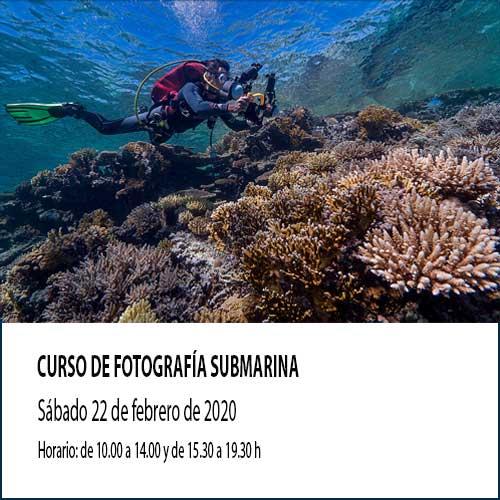 Curso-fotografia submarina febrero 2020. Cursos fotosub 2020 en Madrid. Curso foto submarina en Madrid