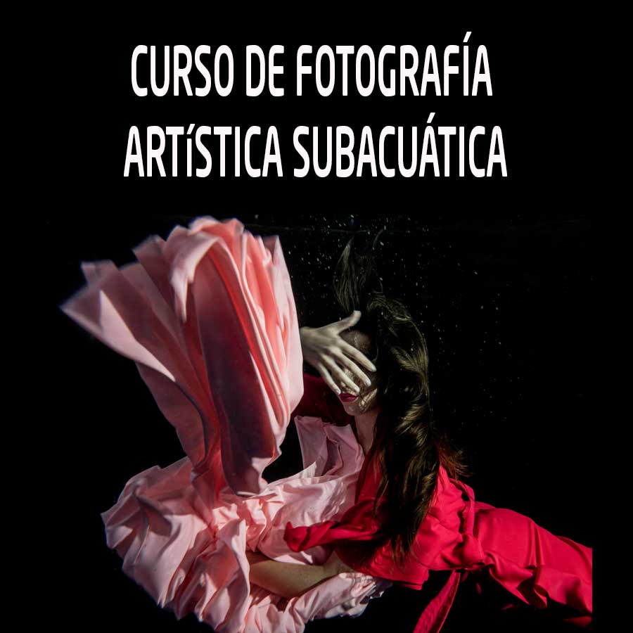 Curso de fotografía artística subacuática